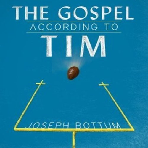 The Gospel According to Tim audiobook cover art