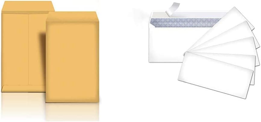 Spasm price Mesa Mall AmazonBasics Catalog Mailing Envelopes Peel Inch B 6x9 Seal