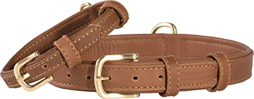 Friends Forever Leather Dog Collars