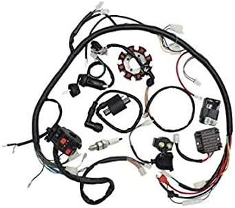 Milwaukee Mall Templehorse Complete Wiring Harness kit Stat Popular shop is the lowest price challenge Wire Loom Electrics