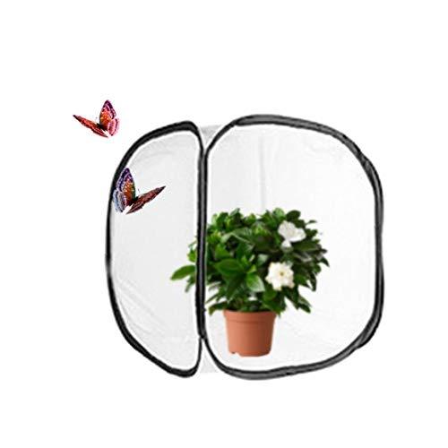linjunddd 1 Satz zusammenklappbaren Insekten- und Schmetterling Habitat Käfig Net Pop-up Breath Insekt Zucht Net Schmetterling Incubator (11,8 x 11,8 x11.8 Zoll) für zu Hause