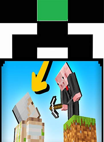 14 New Player Tips & Tricks : in Minecraft (English Edition)
