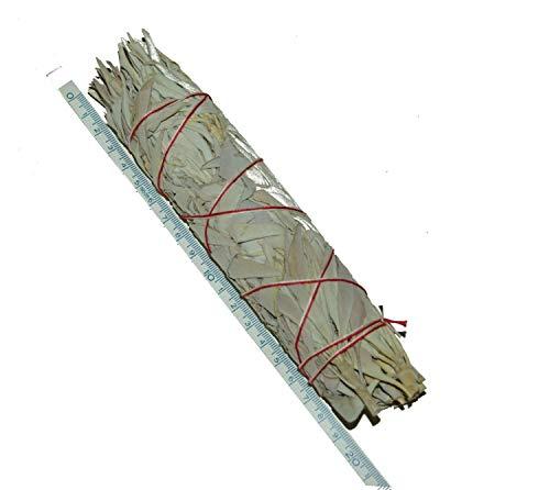 XL long 8+ Inch 21-22cm Californian White Sage smudge stick Salvia Blanca Californiana manojos: Purifica y Limpia Alejando la Energía Negativa de la gente
