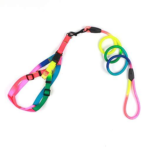 XYBB hondenriem set soft walking pet harness vest lood kleurrijk duurzaam rond tractietouw, 120*1.2cm, Regenboogkleur