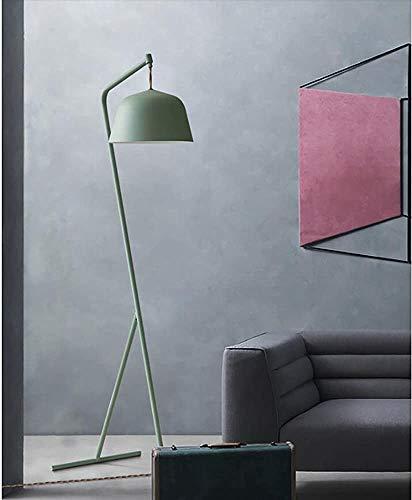 Wohnzimmerstehlampe Schlafzimmerlampe kreativer Jahrgang geflochtene Drahtstehlampe studieren,Green