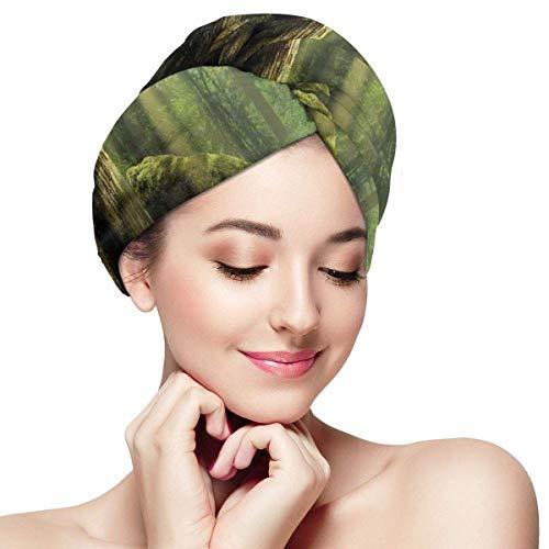 HomeLEE Serviettes à séchage Rapide pour Cheveux Turban, profondément dans la forêt avec Rayons de Soleil Reflets sur Le Corps de l'arbre à Mousse, Bonnet de Douche Absorbant