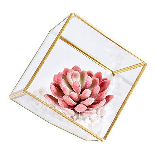 Kunstmatige Succulente Planten in Glas Geometrische Terrarium, DIY Planten Decoraties voor Thuis Tafel Bureau Plank