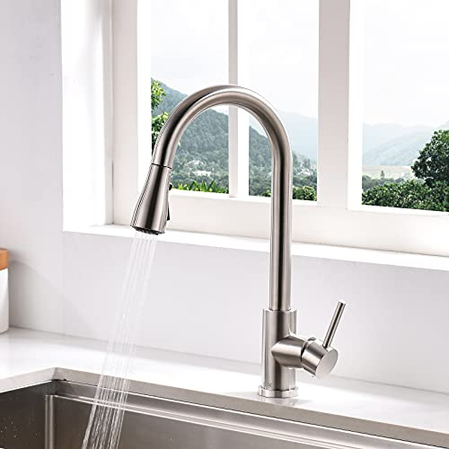 DAYONE Wasserhahn Küche Küchenarmatur Ausziehbar Hochdruck 360° Drehbar Mischbatterie mit 3 Strahlarten Einhand-Spültischarmatur mit Hohe Bogenauslauf für Küche Edelstahl Gebürstet