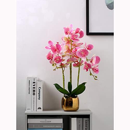 Kunstzijde Moth Orchid Bloemen Oppotten in Gold keramische vaas, valse bloem natuurlijke Kijken Phalaenopsis Bloemen Ornament (Color : B)