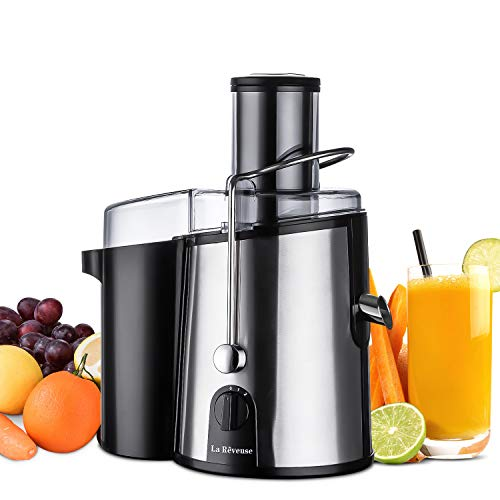La Reveuse Juicer Juice Extractor Centrifugal Juicing Machine 750 Watts Powerful 3 Inches Wide Mouth for Whole Fruits Vegetables, Silver