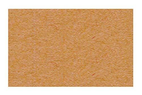 Ursus 2174670 - Tonzeichenpapier hellbraun, DIN A4, 130 g/qm, 100 Blatt, durchgefärbt, hohe Farbbrillanz & Lichtwiderstandsfähigkeit, aus Frischzellulose, perfekte Gr&lage für zahlreiche Bastelarbeiten