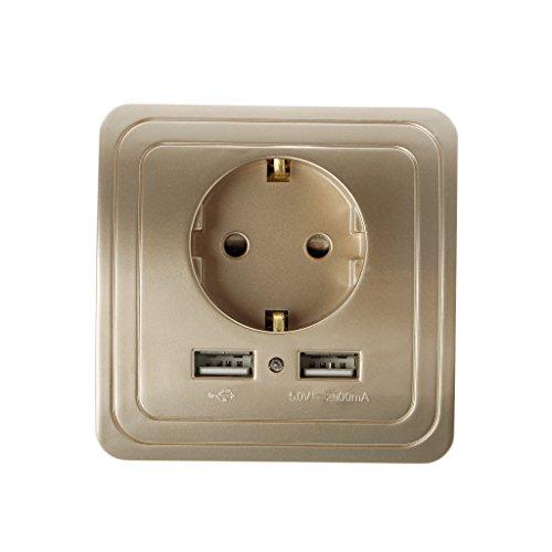ZChun 5V 2A Dual USB-Ladegerät-Adapter EU-Stecker Steckdose LED 16A Steckdose (Gold)