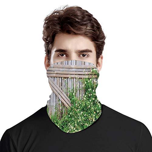 Großartiger Gesichtsschutz, Hals, Bambuszaun, bedeckt von Efeu, Gänseblümchen, Blütenblättern, Kamille, Blütenblätter, Bild, verschiedene Kopftuch,...
