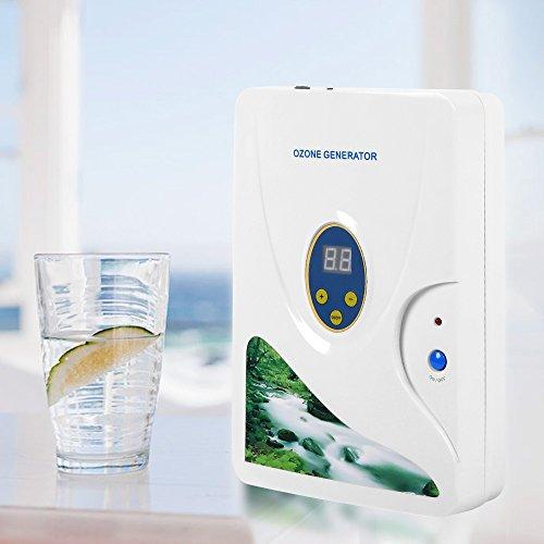 AceFox 600 mg/h Ozon-Generator Ozongerät Desinfektiongerät Luft Wasser Öl für Obst Gemüse Fleisch Süßwasser Wasser