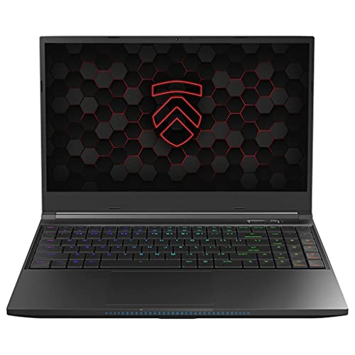 Eluktronics MECH-15 G3 15.6″ Gaming Laptop PC: AMD Ryzen 9 5900HX NVIDIA GeForce RTX 3070 Graphics Card 1TB PCIe SSD 32GB 3200MHz RAM QHD 165Hz 100% sRGB Display Mechanical Keyboard 94WHr Battery