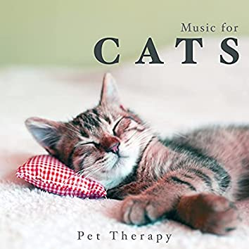 Music for Cats - Pet Therapy Relaxing Music
