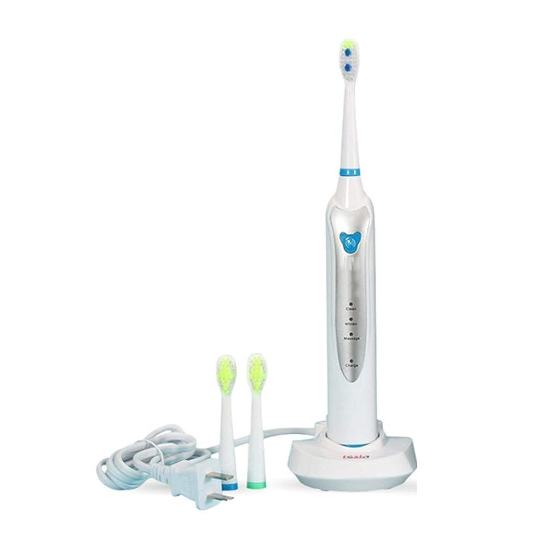 空虚どちらもすり減る3つのクリーニングモードの誘導の再充電可能な電動歯ブラシIPX7の防水音波の歯ブラシ押しボタンの大人の電動歯ブラシ,White