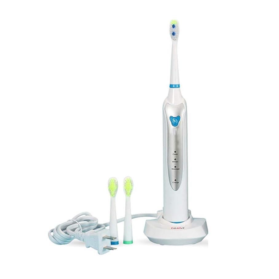 経過不屈サリー3つのクリーニングモードの誘導の再充電可能な電動歯ブラシIPX7の防水音波の歯ブラシ押しボタンの大人の電動歯ブラシ,White