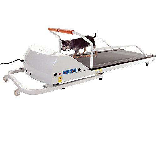 GoPet Petrun Pr710 Foldable Dog Treadmill Indoor Exercise / Fitness Kit