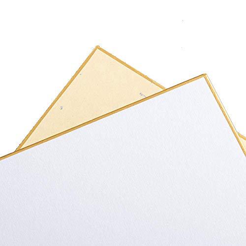 Luma Presents Shikishi - Cartulina de dibujo (136 x 121 mm, 5 unidades, fabricado en Japón)