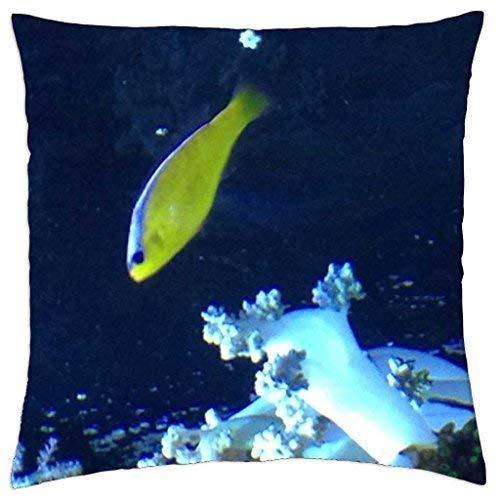 HQSL Kissenbezug Seattle Aquarium Throw Pillow Case Decorative Cushion Cover Square Pillowcase, Sofa Bed 18 X 18 Inch Twin Sides