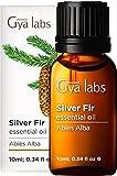 Gya Labs aceite esencial de abeto plateado para concentrarse y respirar - Tópico para aliviar el dolor muscular - 100 aceite de abeto plateado puro para aromaterapia - 10 ml