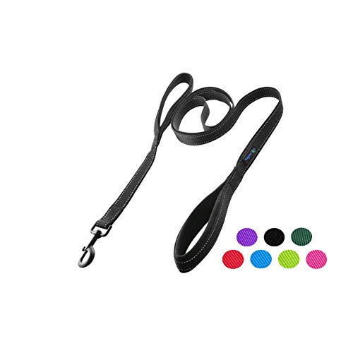 Wagtime Club Soft &Thick Dual Handle 6FT Dog Leash, Premium Nylon Double Padded Handles for Medium, Large or XLarge Dog (Reflective Black)