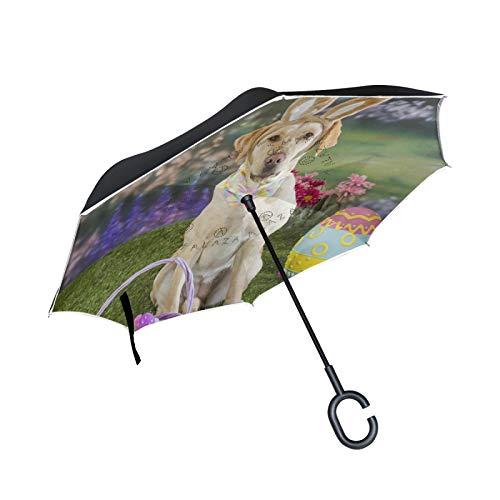 Double Layer Inverted Umbrella Winddichte Regensonnen-Regenschirme mit C-förmigem Griff - Hunde-Ostereier