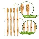Zoom IMG-1 pandoo spazzolini manuali in bamb