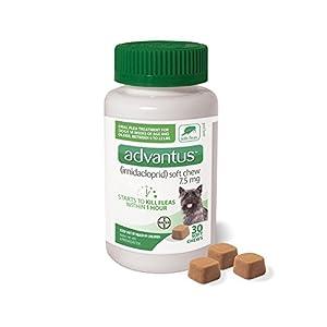 Advantus (Imidacloprid) 30-Count Small Dog Flea Treatment Chew, Flea Chews for Small Dogs, 4-22 Pounds