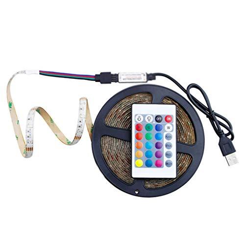 ZLYPSW Tira de luz de 5 V USB 2835 SMD LED cinta flexible para lámpara 0.5 1 2 3 4 5 m Control remoto impermeable para el hogar luz LED tira lámpara (tamaño: 5 m)