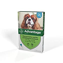 One treatment prevents further flea infestation for up to four weeks on dogs Advantage Flea Treatment is supplied in 1 pack containing 4 single use pipettes Treatment should be repeated after four weeks