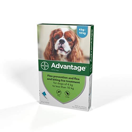 Advantage Spot On Flea Treatment 100 Medium Dogs 4-10kg, 4 pipettes