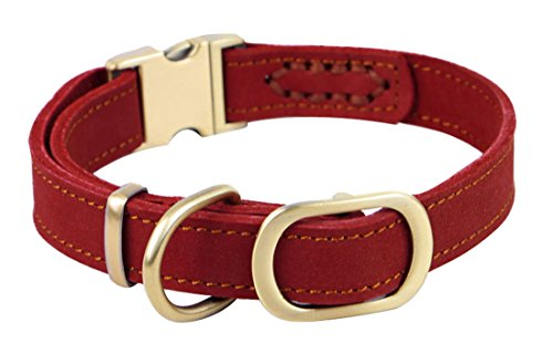 """Rantow handgemachte justierbare Haustier-Hundehalsband 11.9 """"bis 16,5"""" und 0,78 """"Wide, echtes Leder-Hundetrainings -Kragen für kleine / mittlere Hunde (Rot)"""
