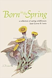 Born in the spring: A collection of spring wildflowers