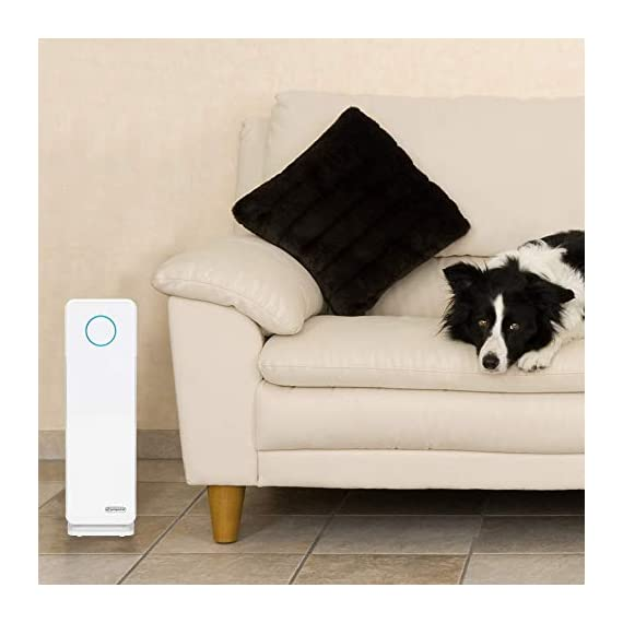 Germ guardian true hepa filter air purifier, uv light sanitizer, eliminates germs, filters allergies, pets, pollen… 9 5-in-1 air purifier for home - electrostatic hepa media air filter reduces up to 99. 97% of harmful germs, dust, pollen, pet dander, mold spores, and other allergens as small as. 3 microns from the air pet pure filter - an antimicrobial agent is added to the filter to inhibit the growth of mold, mildew and odor-causing bacteria on the filter's surface kills germs - uv-c light helps kill airborne viruses such as influenza, staph, rhinovirus, and works with titanium dioxide to reduce volatile organic compounds