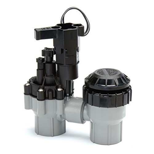 Rainbird Plastic ASVF Series Electric Valve with Flow Control and Atmospheric Backflow Preventer, 1'/24 VAC