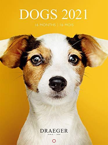 ドレジャー 2021年 スモールカレンダー DOGS(壁掛けタイプ) 犬 動物 かわいい 写真 月曜始まり フランス製 中国印刷