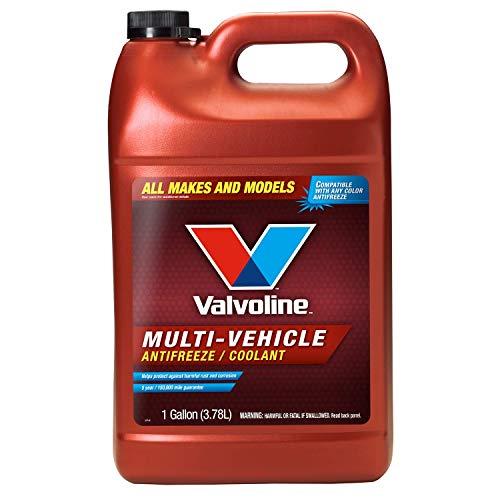 MaxLife Valvoline Multi-Vehicle Concentrate Antifreeze/Coolant 1 GA