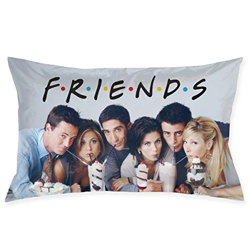 ViiANTtt Friends Pillow Case Home Decor Cushion Both Side Print Standard Cotton Rectangle Throw Pillow Cover Protector Decorative for Sofa Bed Office and Car with Zipper Size 20x30 Inch