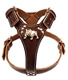 M&D Beautiful Brown Leather Dog Harness with English Bulldog Head Motif (Brass Fittings)