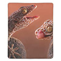 マウスパッド ノートブック デスクトップ コンピューター アクセサリー ミニ オフィス用品 マウスマット爬虫類トッケイゲッコートカゲ動物相