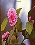 Camellia Japonica Flower Journal: 120 paged Notebook (8.5'x11') | A beautiful gift for college students teens dummies mom dad mum vegans horticulturist florist or Gardening & Landscape Design