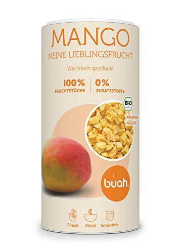 BUAH® Gefriergetrocknet Mango BIO I Mango Getrocknet I Trockenfrüchte ohne Zucker I ungeschwefelt (180g)