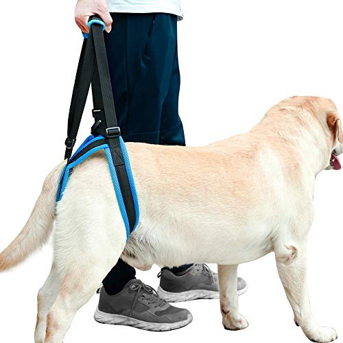 ROZKITCH Pet Dog Support Harness Rear Lifting Harness Veterinarian Approved for Old K9 Helps with Poor Stability, Joint Injuries Elderly and Arthritis ACL Rehabilitation Rehab L