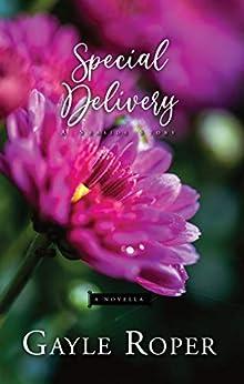 Special Delivery: A Seaside Novella (Seaside Seasons Book 7) by [Gayle Roper]
