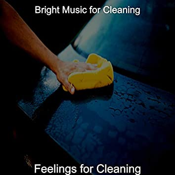Feelings for Cleaning
