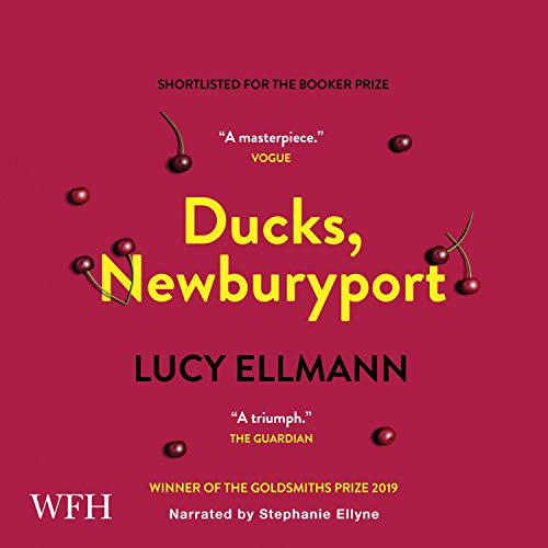 『Ducks, Newburyport』のカバーアート