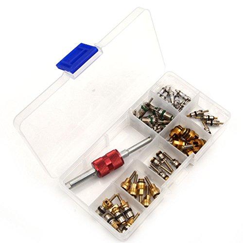 nikauto 45pcs Aire Acondicionado Válvula Core y 1pcs R12R134a A/C Refrigeración Tire Valve Stem núcleos Remover Tool