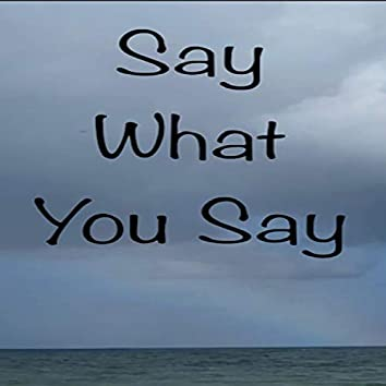 Say What You Say